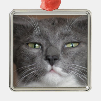 DON'T MESS WITH ME!! METAL ORNAMENT