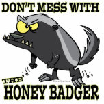 DONT MESS WITH THE HONEY BADGER PHOTO SCULPTURE