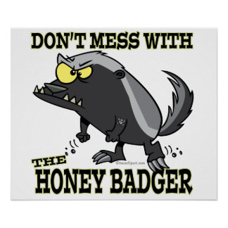DONT MESS WITH THE HONEY BADGER POSTER