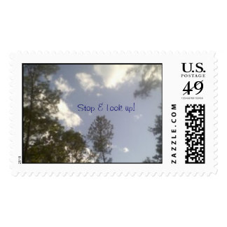 Dont miss out Stop Look up stamp