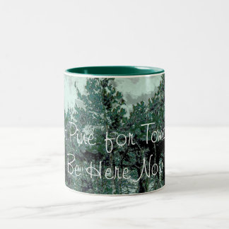 Don't Pine for Tomorrow Mug - Be Here Now