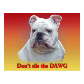 Don't rile the DAWG Postcard