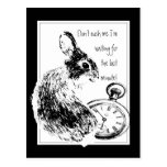 Don't Rush Me, Last Minute, Late Fun Rabbit Post Card