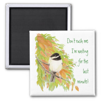 Don't Rush Me Procrastination Fun Bird Humor 2 Inch Square Magnet