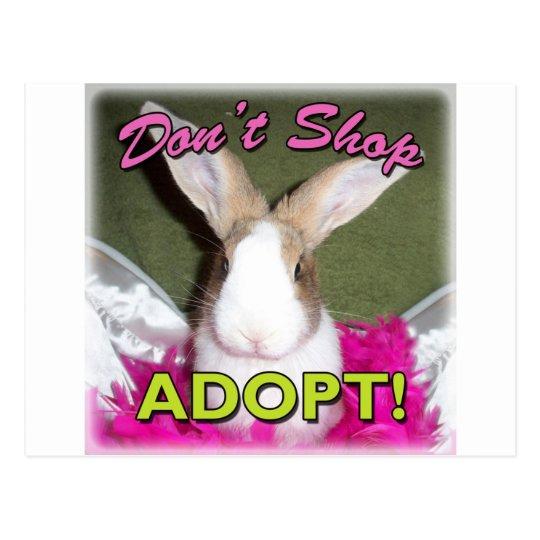Don't Shop, Adopt! Postcard