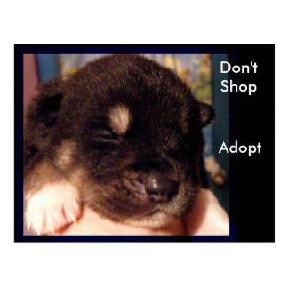 Don't Shop, Adopt Postcards