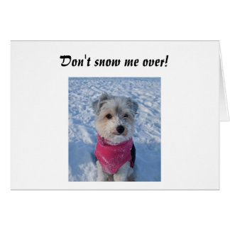 DON'T SNOW ME OVER=40th BIRTHDAY Card