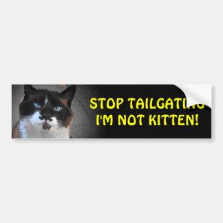 Don't Tailgate I'm Not Kitten Bumper Sticker