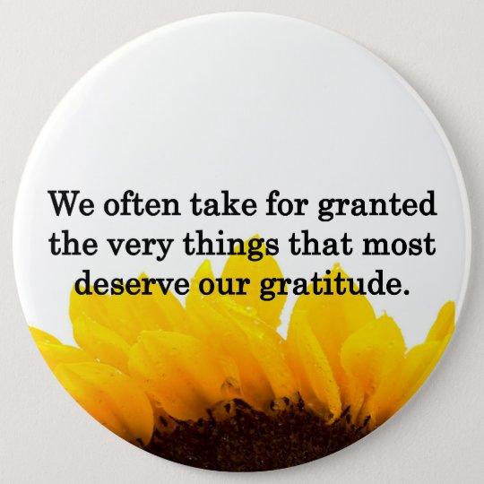 Don't Take Wonderful Things for Granted Pinback Button