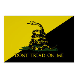 Dont Tread On Me Anarchist Flag Poster