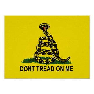 Dont Tread On Me Cobra Poster