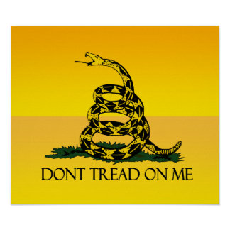 Don't Tread on Me Ensign Print