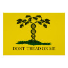 Don't Tread on Me - for scientists Poster