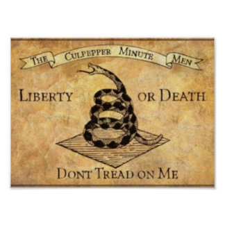 Don't Tread on Me. Poster