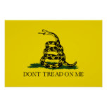 Dont Tread On Me Print
