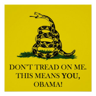 DON'T TREAD ON ME THIS MEANS YOU OBAMA POSTER