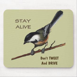 Don't Tweet & Drive: Bird: Color Pencil Art Mouse Pad