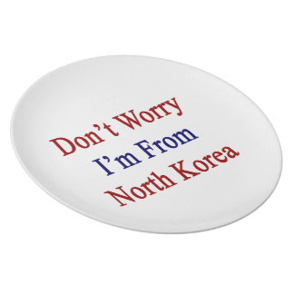 Don't Worry I'm From North Korea Dinner Plates
