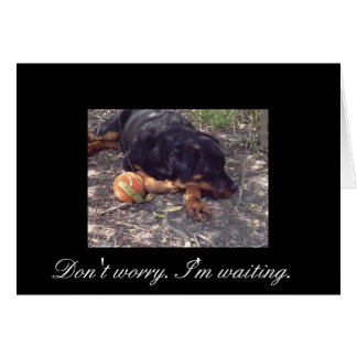 Don't Worry I'm Waiting. Greeting Card