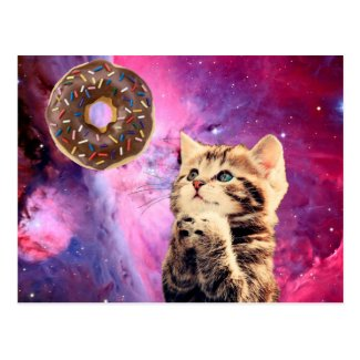 Donut Praying Cat Postcard