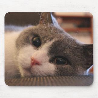 Donut The Cat Mousepad