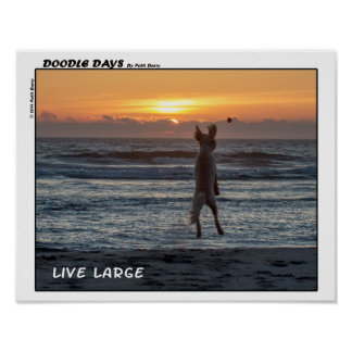 "Doodle Days Comics ""Live Large"" Poster (14 x 11)"