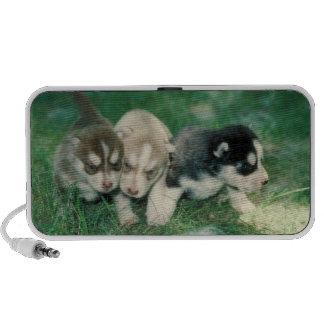 Doodle de los perritos del husky siberiano iPhone altavoz