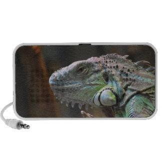 Doodle Speaker with head of Iguana lizard