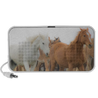 Doodle speakers with horse image