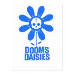 Dooms Daisies Postcard