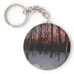 door county, wisconsin, winter, sunset, woods,
