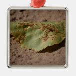 door cty second look-30.jpg ornament