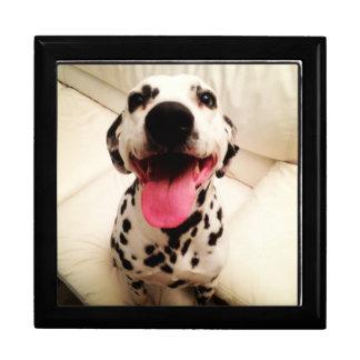 Door jewels Dalmatian Gift Box