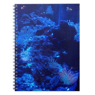 door way to the sea spiral notebook
