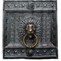 Doorknocker Lion - Black / Gold Shower Curtain