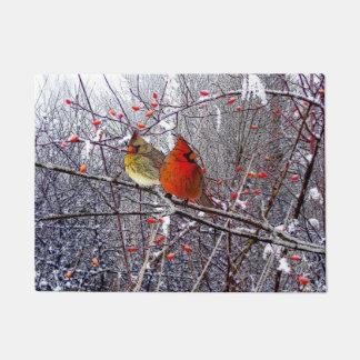 Doormat cardinal del navidad felpudo