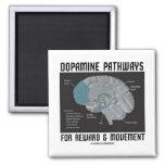 Dopamine Pathways For Reward & Movement Magnet