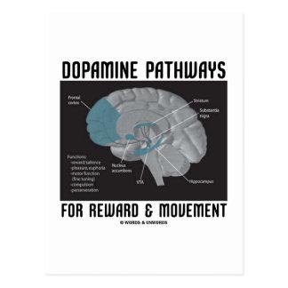 Dopamine Pathways For Reward & Movement Postcard