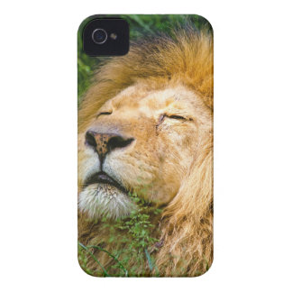 Dope Lion in the grass Case-Mate iPhone 4 Case