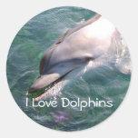 Dophin School Teacher Reward Sticker