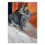 Dora, el gato de Tabby gris, Tarjetas
