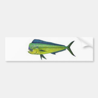Dorado Bumper Sticker