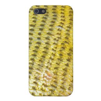 Dorado de oro - caso de IPhone de la piel de los iPhone 5 Fundas