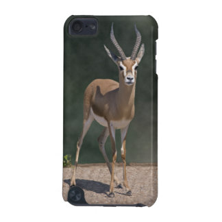 Dorcas Gazelle iPod Touch Speck Case iPod Touch (5th Generation) Cover