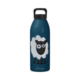 Doris Reusable Water Bottles