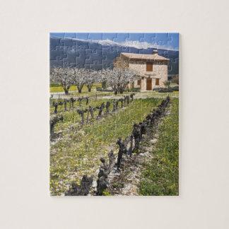 Dormant vineyard, fruit blossoms, stone house, jigsaw puzzle