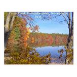 Dorrs Pond in the Fall-3, Dorrs Pond, Livingsto... Post Card