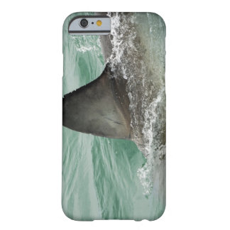 Dorsal aileron of a Great White shark Barely There iPhone 6 Case
