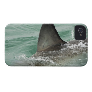 Dorsal aileron of a Great White shark iPhone 4 Case