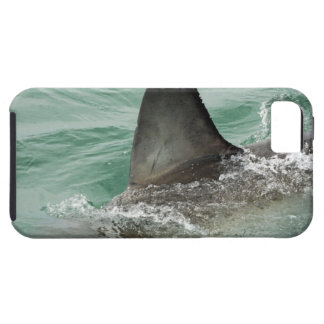 Dorsal aileron of a Great White shark iPhone SE/5/5s Case
